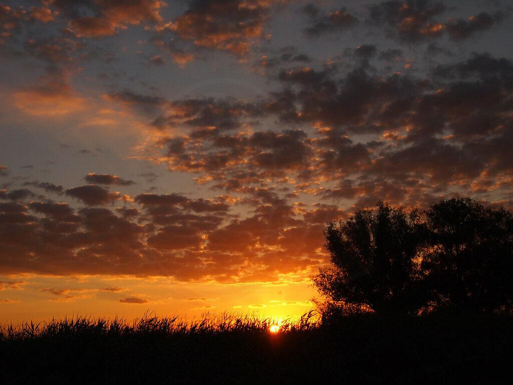 Delta Sunrise