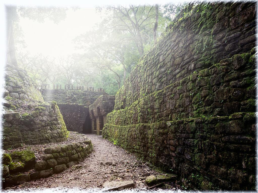 The Labyrint