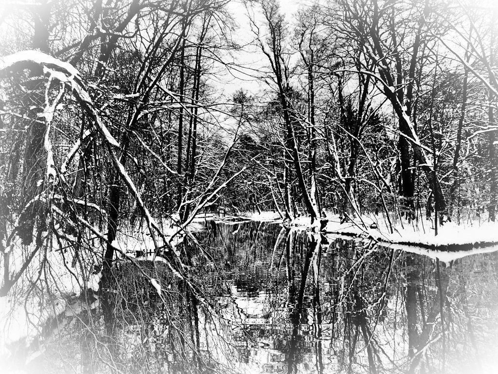 Winterwonderland in B&W