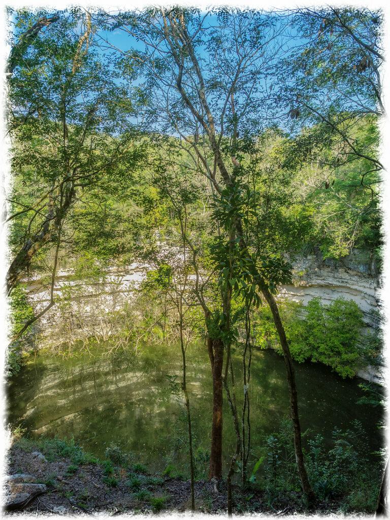 The Sacred Cenote